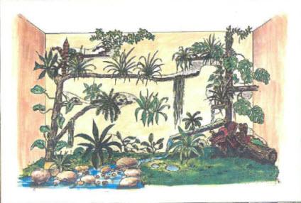 foto Палюдариум: джунгли в доме