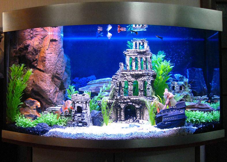 Как раскроить стекло для аквариума