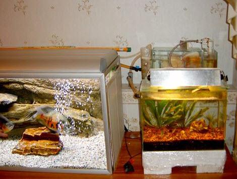 Протока в аквариуме
